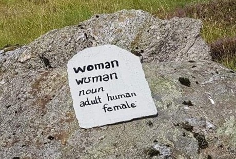 Image of a large piece of rock and a grey slate placed on it with the dictionary definition of the word woman, that is, an adult human female.