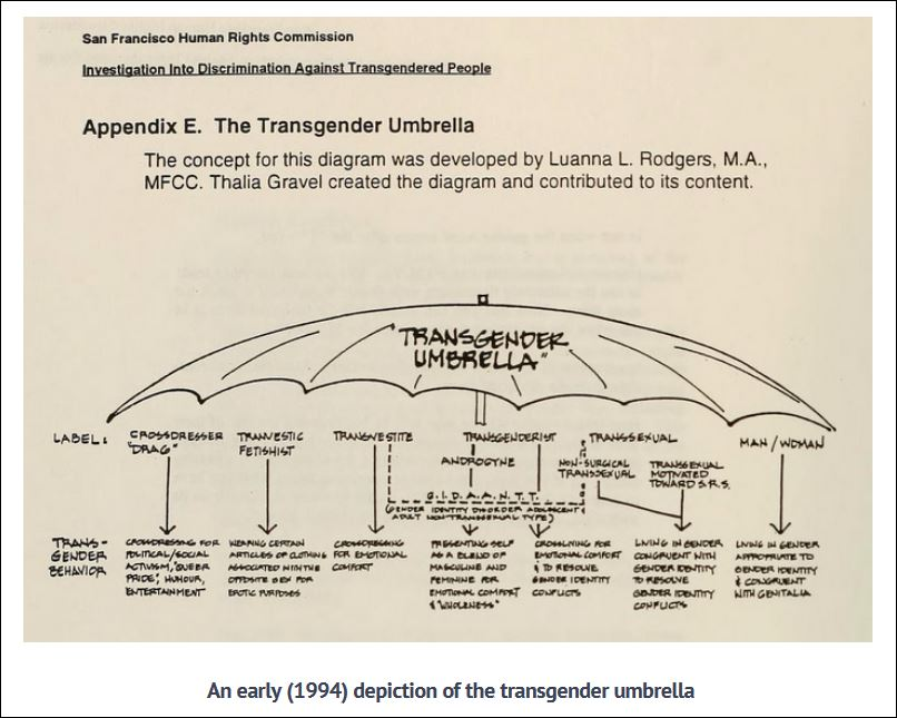 The Transgender Umbrella from 1994